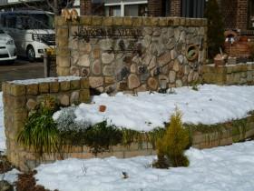 花の代わりに白い雪