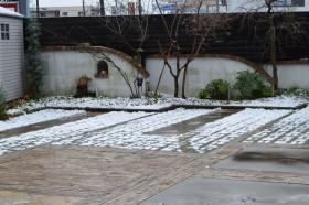 展示場初雪