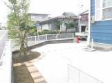 シンボルツリーヒメシャラ