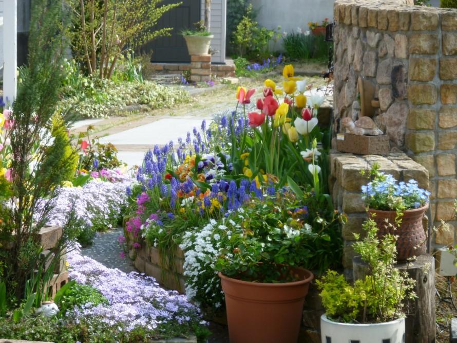 クワナ花壇