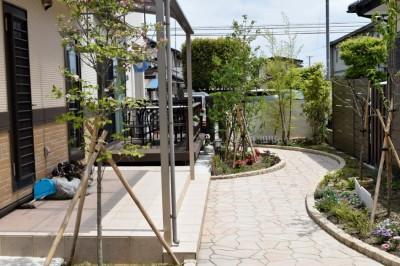 庭の遊歩道