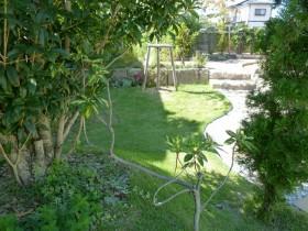 芝生と木陰
